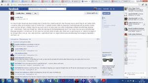 Camilla Plum Facebook væg Screen shot
